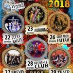 Новогодние шоу-программы в ресторане «Сказка Востока 1001 ночь»