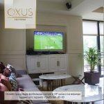 Трансляции Чемпионата Мира по футболу в ресторане Oxus