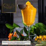 За освежающими лимонадами – в ресторан Oxus
